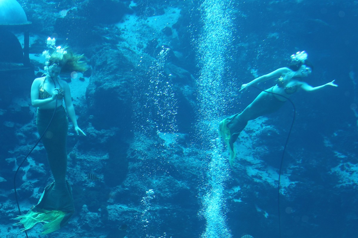 Weeki Wachee: Once-in-a-Lifetime Means Never Again